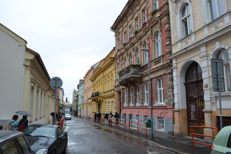 Bratislava Sokaklarındaki Bebekler ve Ezilmiş Akağaç Yaprağı