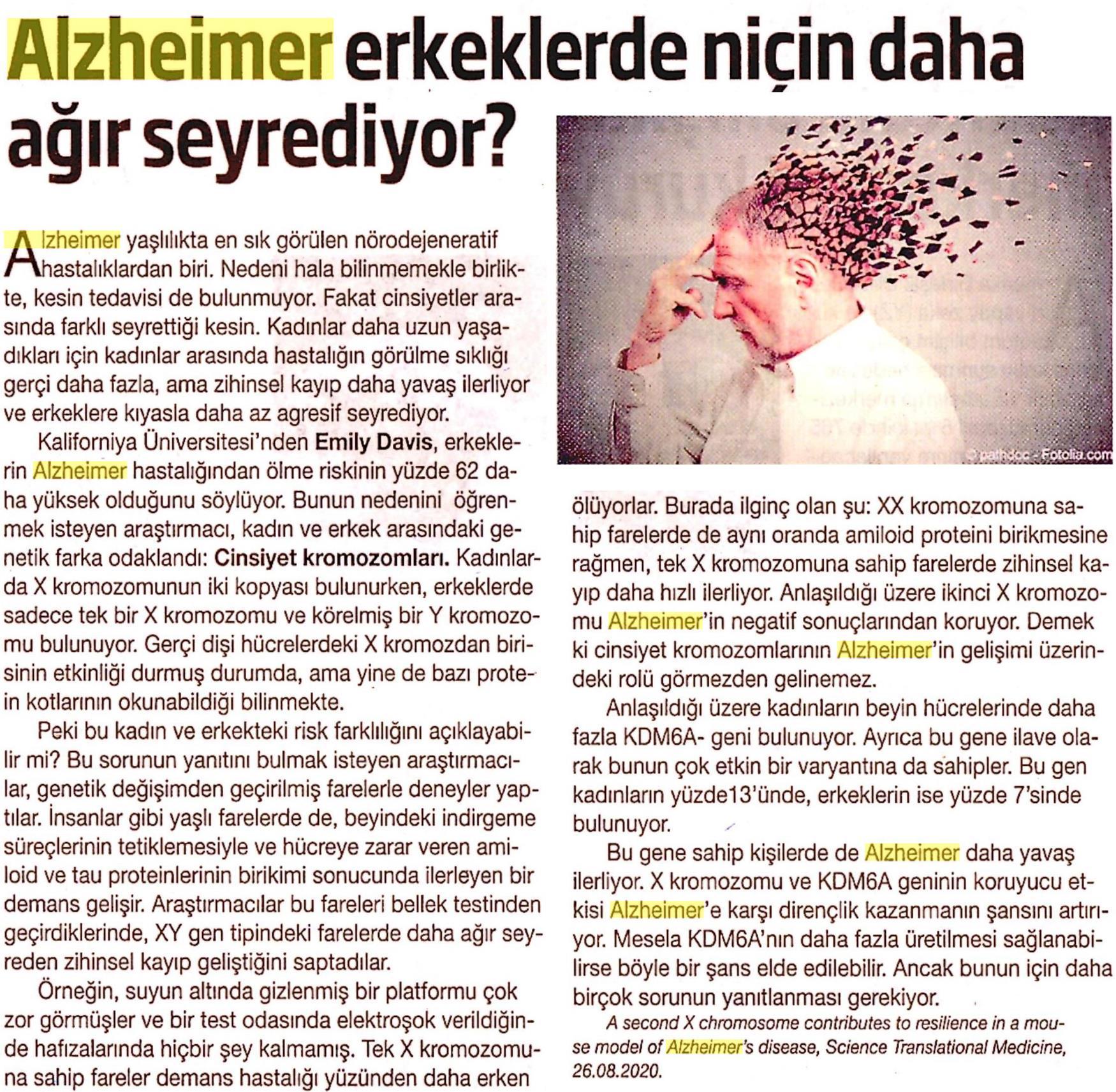 Alzheimer Erkeklerde Niçin Daha Ağır Seyrediyor
